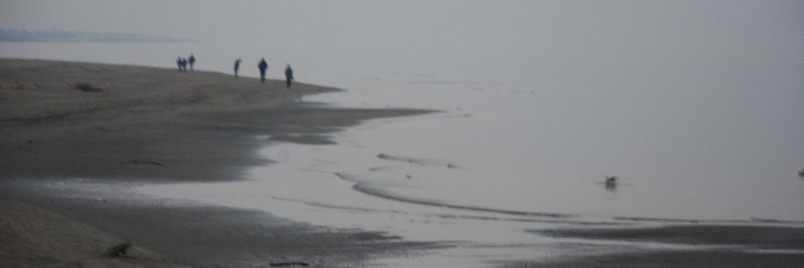 Il mare, la nebbia, i colori